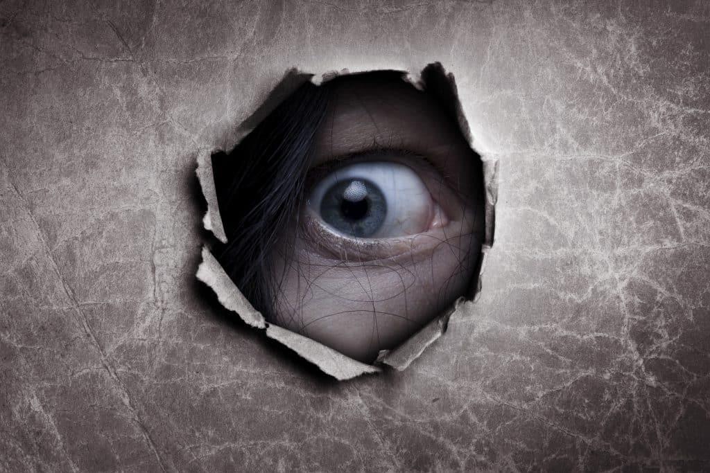 stalking tipi stalker denuncia