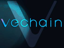 VeChain cos'è VET e VTHO